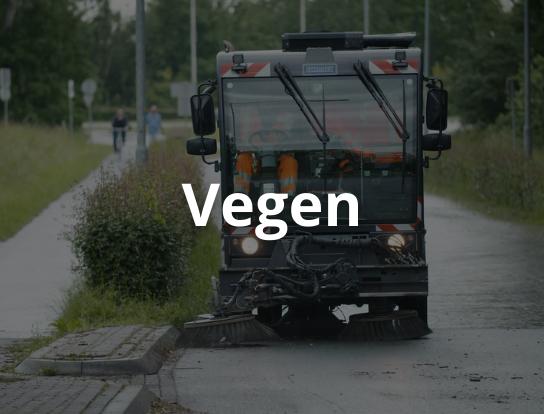 Vegen-1